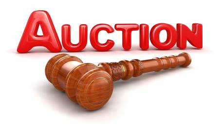 Ron Berger Auction